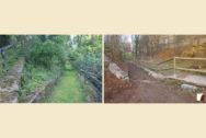 Trockenmauern und Zäune im Schlangenweg