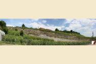 Hangpanorama mit Sicht auf Trockenmauern