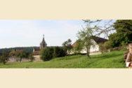 Kloster Bebenhausen von einer benachbarten Wiese aus fotografiert